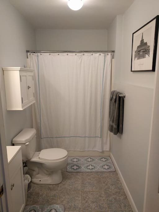 Private bathroom and shower