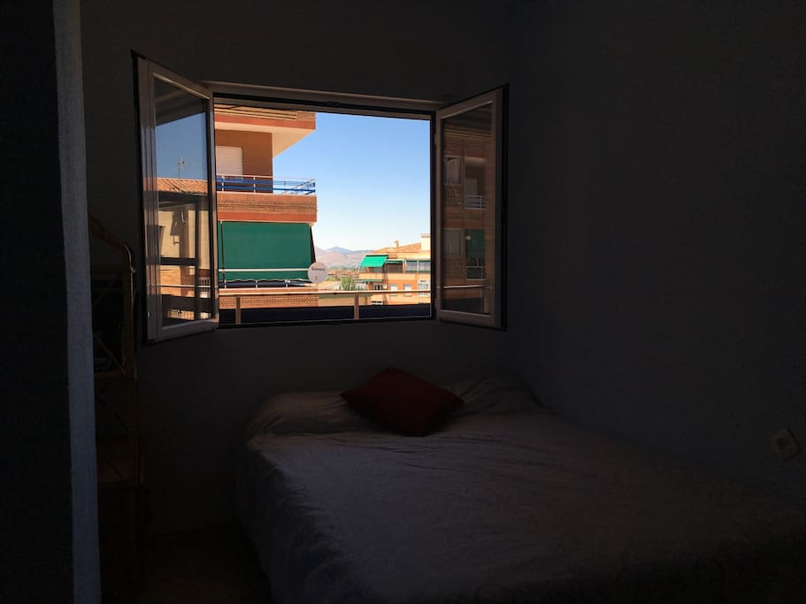 Room Window + View!
