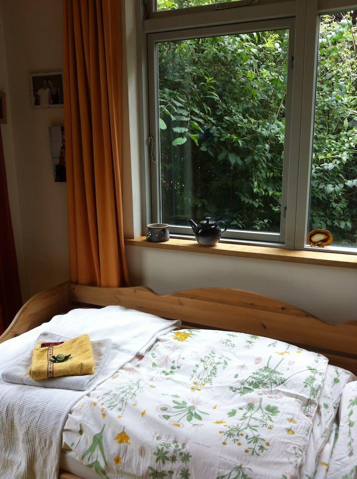 Bezauberndes Zimmer mit Terasse