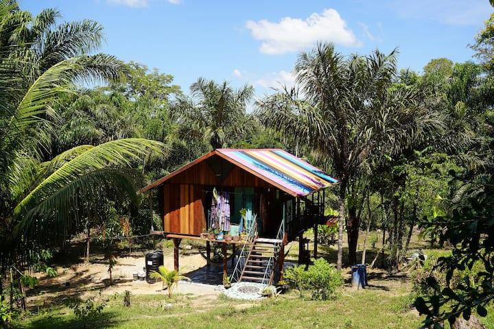 Enjoy Nature, Art & Relax @ Anouk's Junglehouse