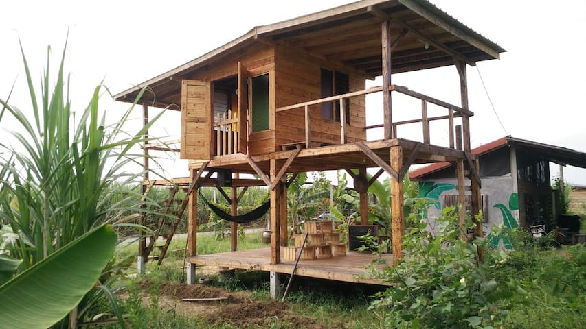 Numthang Permaculture Studio Room