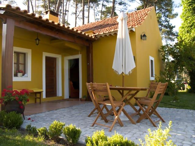 A Casa do Ribeiro - AL - Alcobaça - Casa