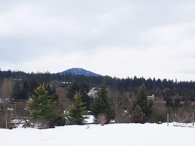 Mount Benson View - Nanaimo - Apartamento