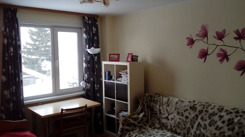 Room for rent in two-floor house. - Novosibirsk