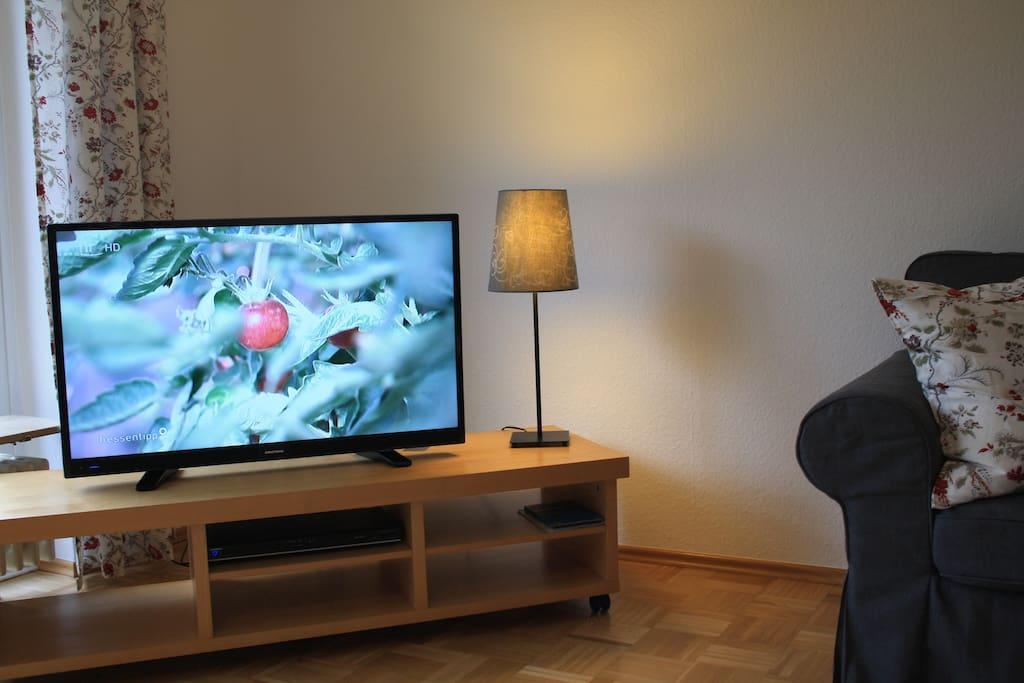 Wohnzimmer FlatTV