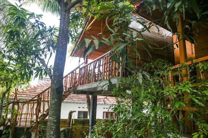 Orchid Tree House
