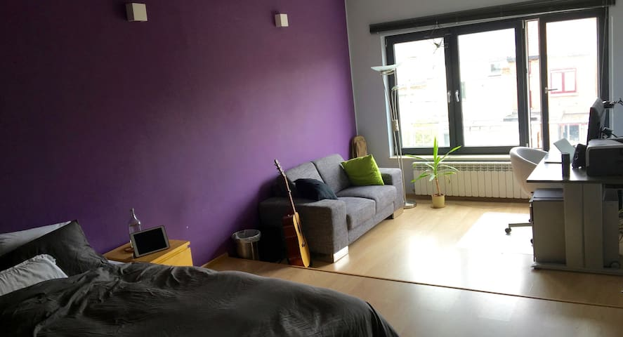 Huge & Cosy Room with Attached Bathroom - Hasselt - Apartament
