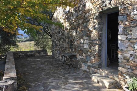 Maison en pierre au cœur d'un domaine d'Oliviers