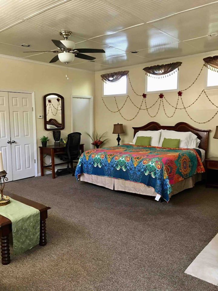 Master bedroom with private bathroom & entrance.