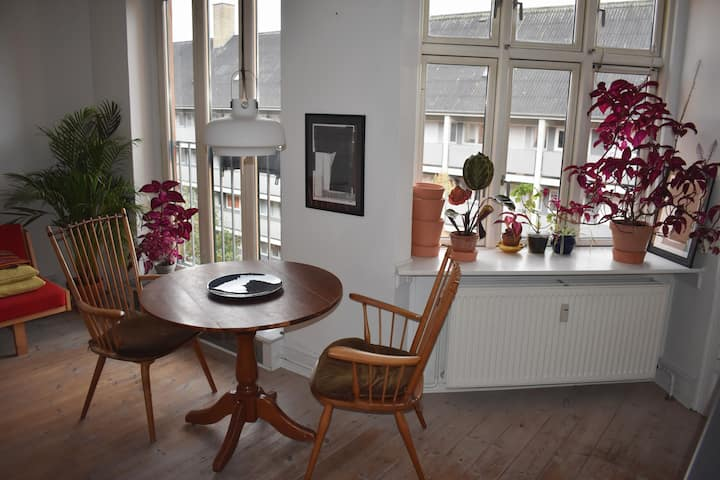 Bright 2 room apartment in charming Nørrebro