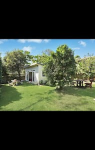 Bright and cosy garden cabin - Dee Why
