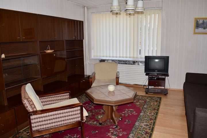 A cozy apartment in the city center -Druskininkai