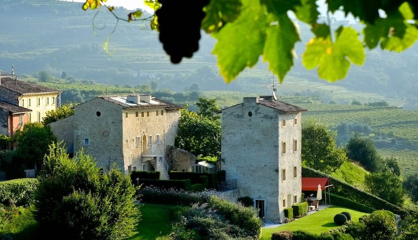B&B PIANAURA SUITES in Valpolicella - Marano di Valpolicella - Bed & Breakfast