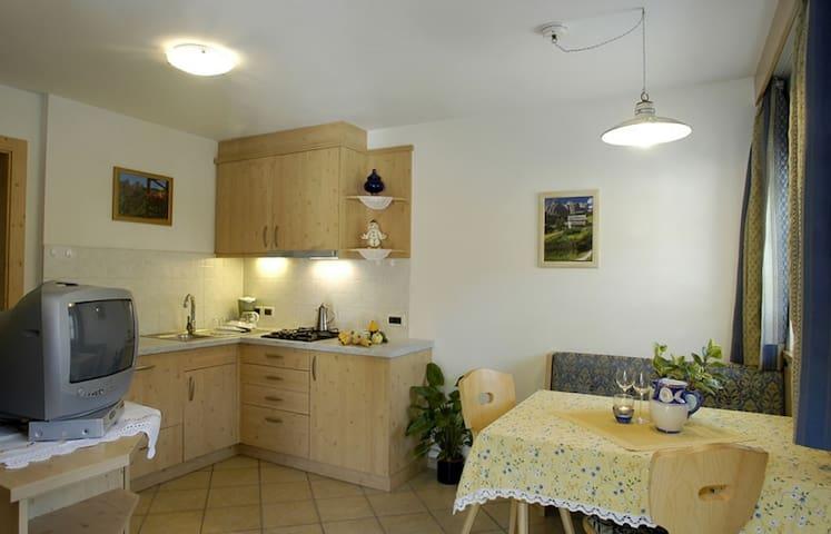 Appartamento Montanara tipo A in Alta Badia - San Cassiano - Apartment