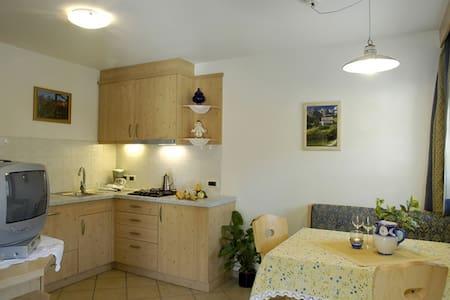 Appartamento Montanara tipo A in Alta Badia - San Cassiano - Wohnung
