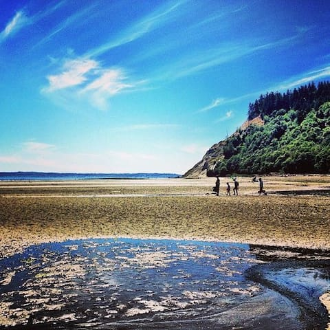 South Whidbey wonders