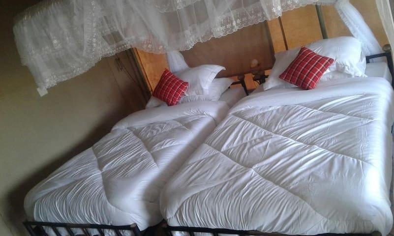 ZEBRA KEMANG'ORE BUSTH TENTED LODGE Namber 2