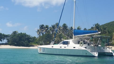 Explore Grenadines on Luxury Catamaran Yacht