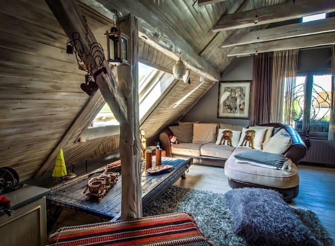 Confortable atypical Apartment - 1-6p - Strasbourg - Apartmen