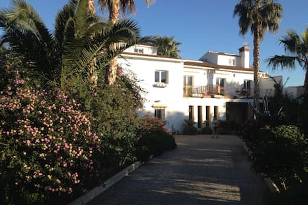 Rural Spain - Organic citrus farm - Bed & Breakfast