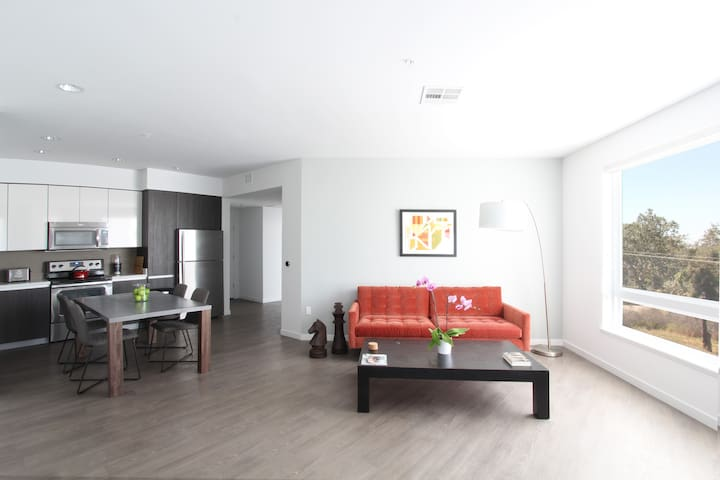 Luxurious 2 Bedroom 2 Bathroom In North San Jose Serviced Apartments For Rent In San Jose
