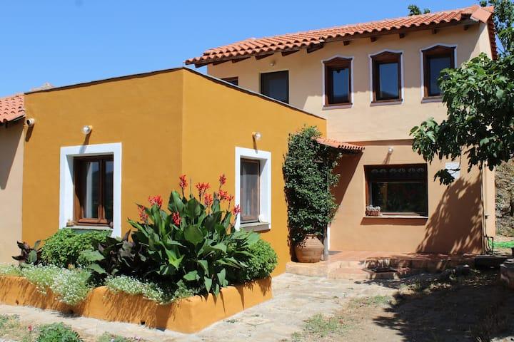 Varias Art house