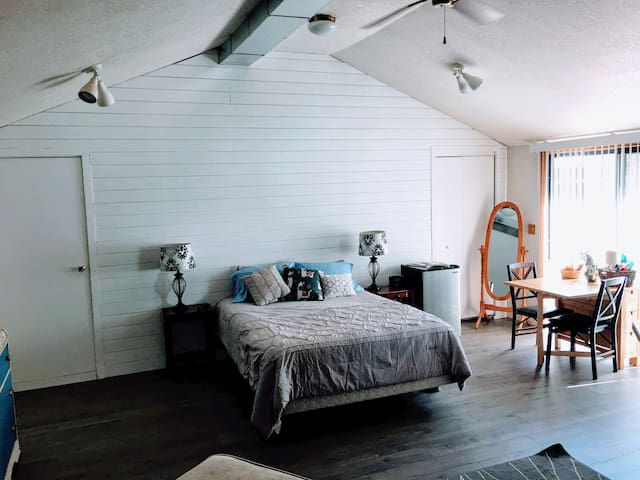 This the main room. It is a 500 square foot space with brand new shiplap and flooring. The door to the left leads to an office area and the door to the right leads to a set of bunkbeds.