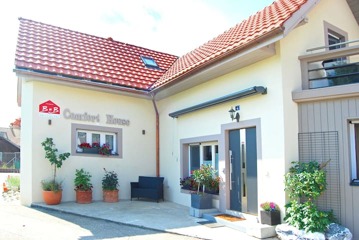 House for 15 persons in B&B Comfort House Lostorf - Lostorf - Bed & Breakfast