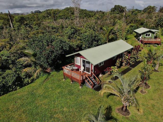 Puna Rainforest Retreat Hotspring: Purple Passion