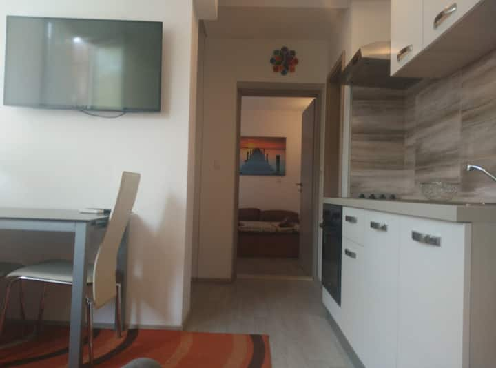 Anthony Center Apartment