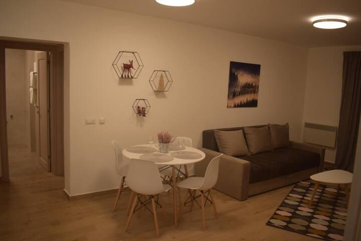 Apartman Bergen 2 - prizemlje
