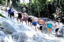 Climb the fountain at Dunn's River Falls