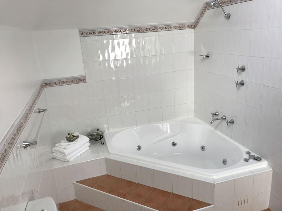 Large 2 person spa bath