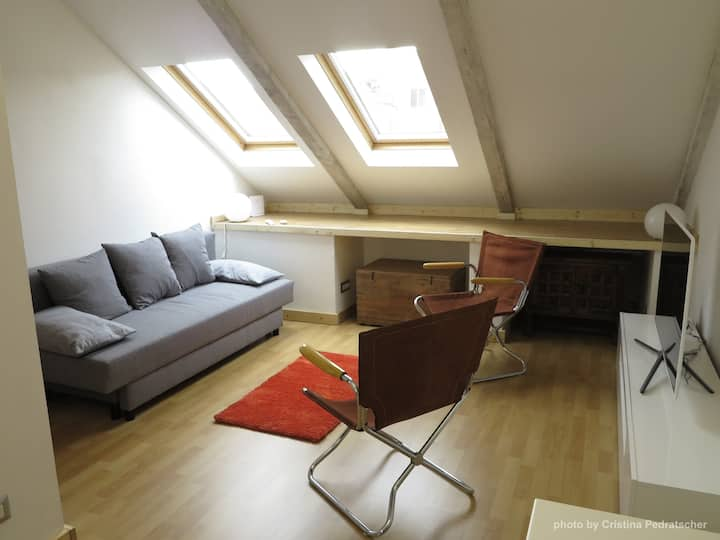 Modern apartment, Turin center