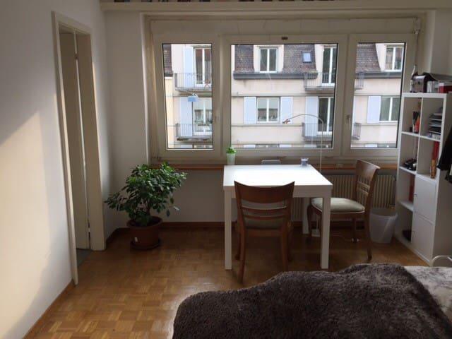 Studio in the heart of Zurich - Zurigo - Condominio