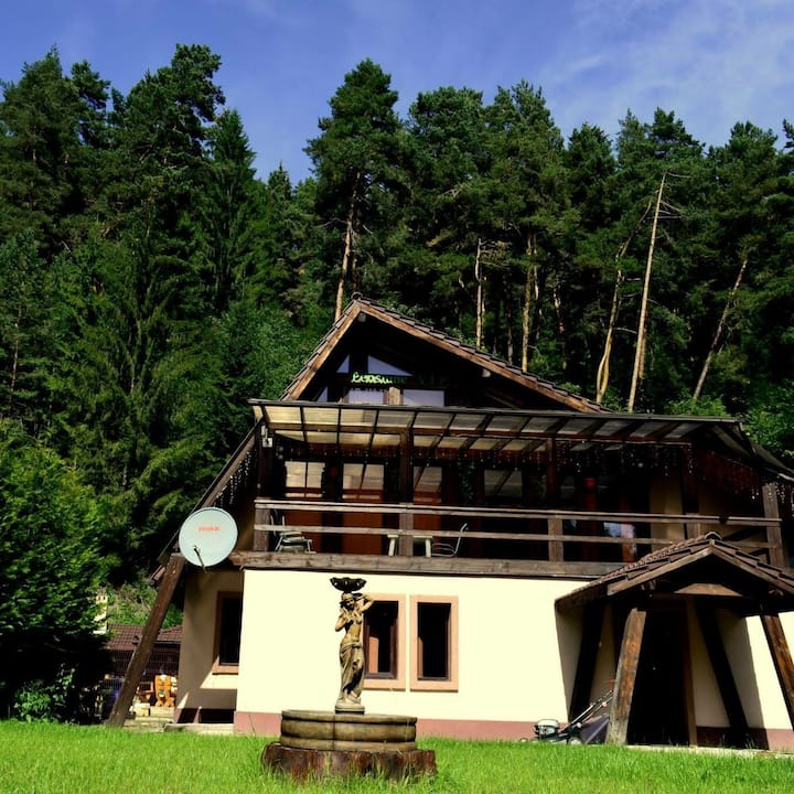 Cozy pension in Heart of Bucovina