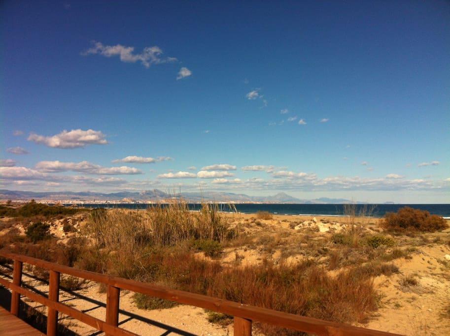 Playa y entorno de dunas  a 1,5 km.