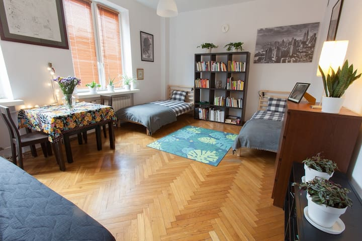 Good River apartment, near Vistula