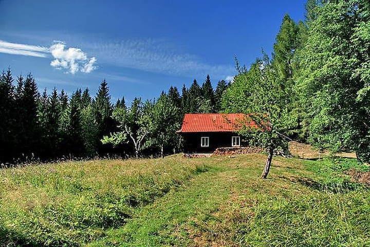 Samota v Karlovicách - Velké Karlovice - Houten huisje