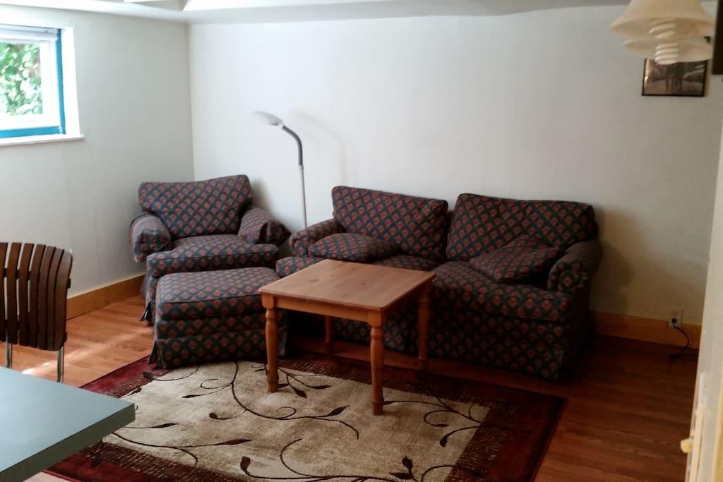 Living room, nice natural light, breakfast bar