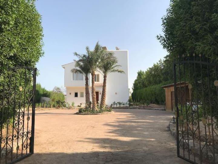 Elgouna Villa