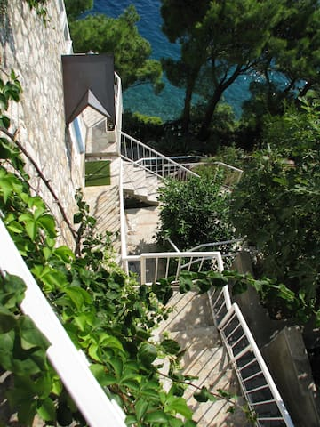 Stairs to pool/sea