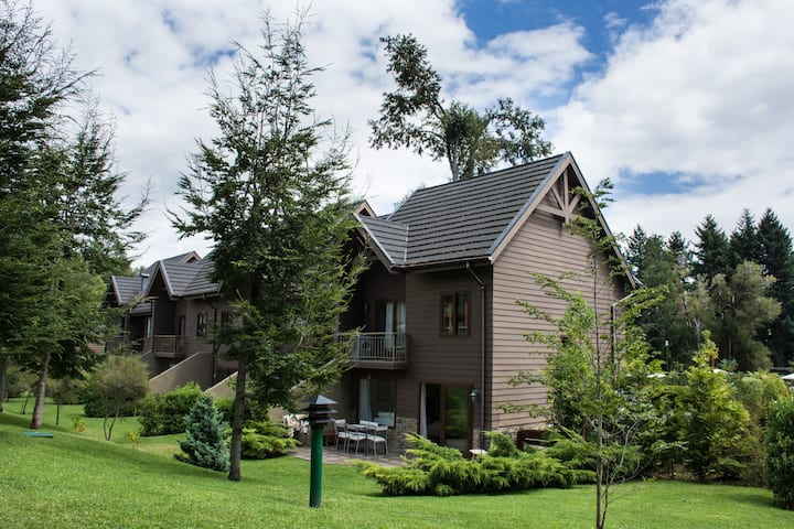 Fully Equipped House in Pucon