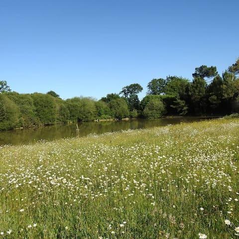 Le gîte le Moulin des perrays