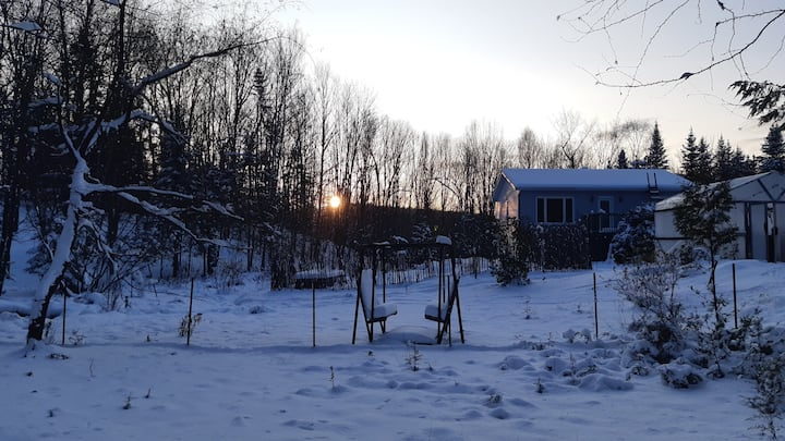 Jolie clairière aux portes du Parc du Mont-Orford