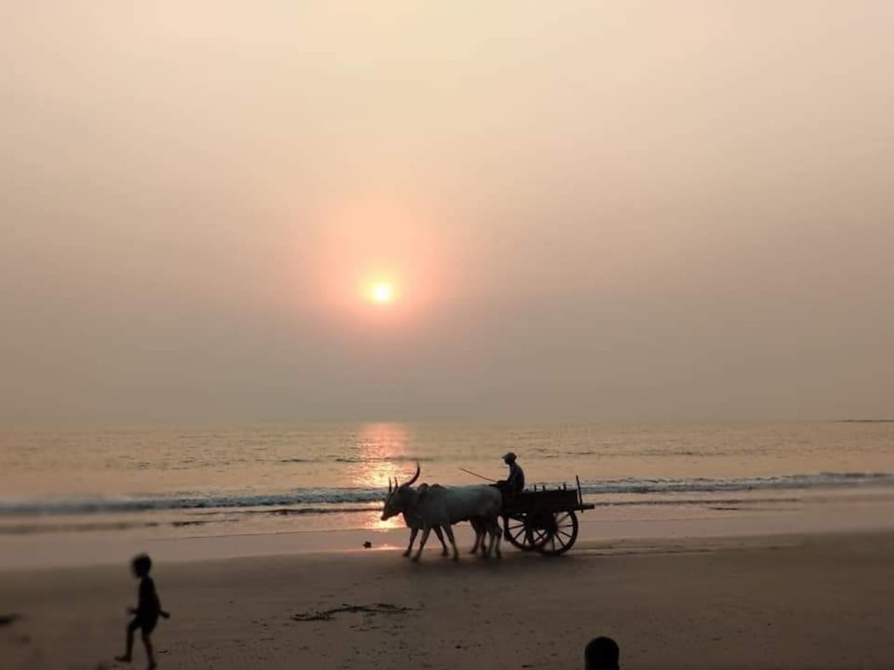 Nandgaon Beach Flat and safe bech for kids  If yourm are looking for a calm and peaceful non crowded place then nandgaon beach will meet your requirements