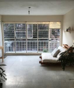 Bright apartment in La Roma Sur - Ciudad de México