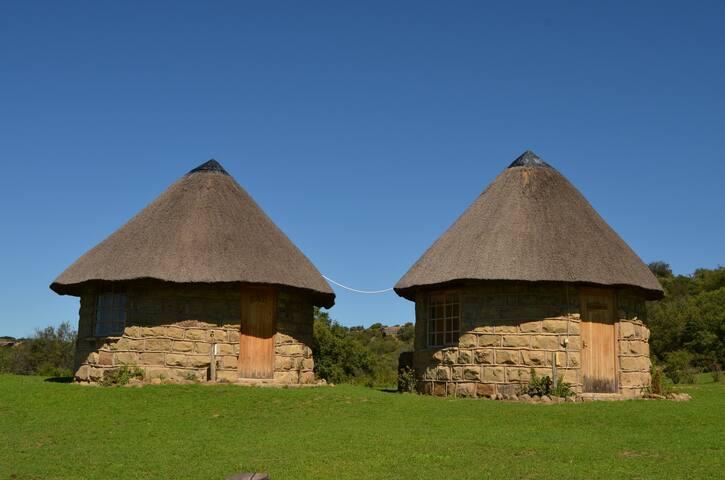 Boomplaats Guest Farm Rondavel Wildebees