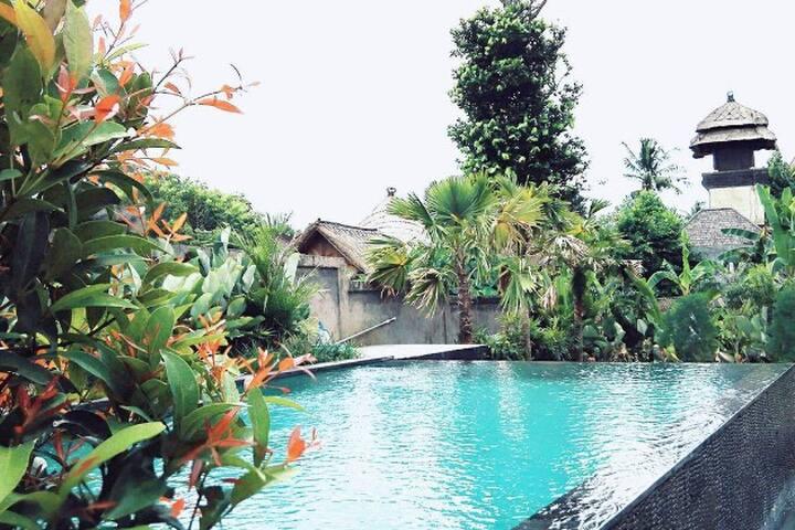 Pererenan beach Jubilee Suites n°5 - Mengwi - Guesthouse