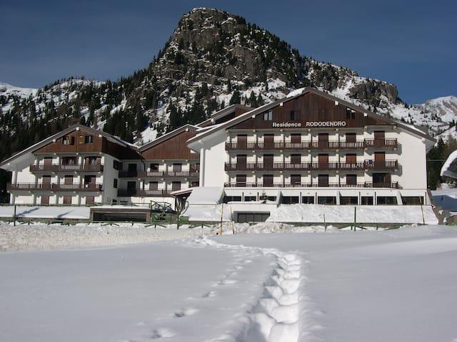 Appartamento in Trentino vicino alle piste da sci